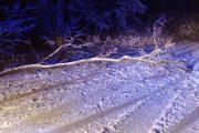 Ponad 30 interwencji do usuwania skutków opadów śniegu