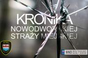 Kronika Nowodworskiej Straży Miejskiej od 15 do 23 kwietnia