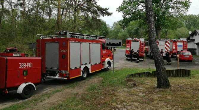 Palmiry: Ćwiczenia związane z pożarami lasów.