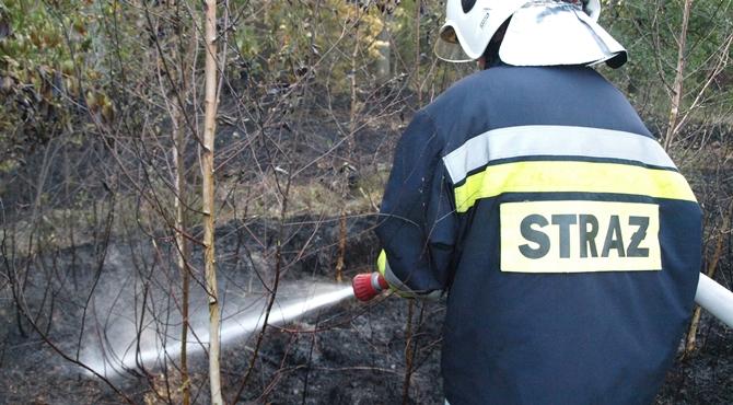 Nowodworski: 17 interwencji strażaków w miniony weekend