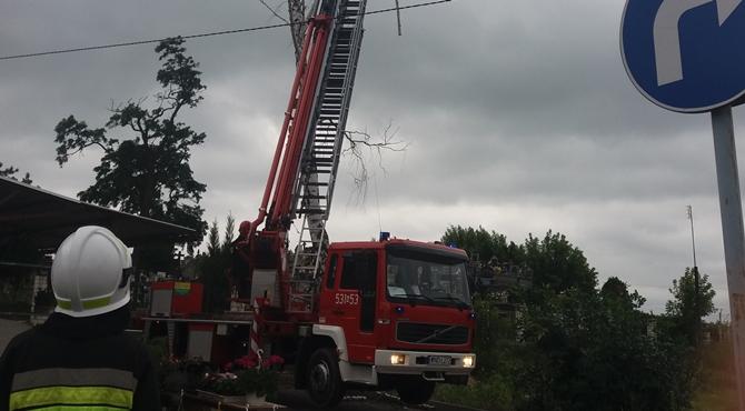 Nowy Dwór Maz: Strażaków przygniotło drzewo