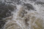 Rośnie poziom rzeki Wisły