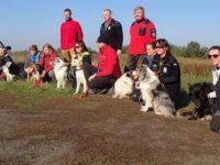 Modlin Twierdza: Specjalny trening psa ratowniczego