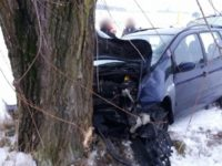Borkowo: Kierujący Fordem uderzył w drzewo