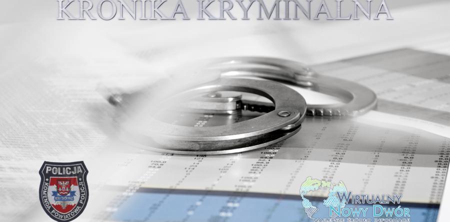 Kronika Kryminalna od 8 do 14 stycznia