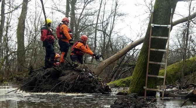 Pomiechówek: Strażacy na pomoc energetykom