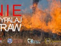 Strażacy apelują: STOP WYPALANIU TRAW