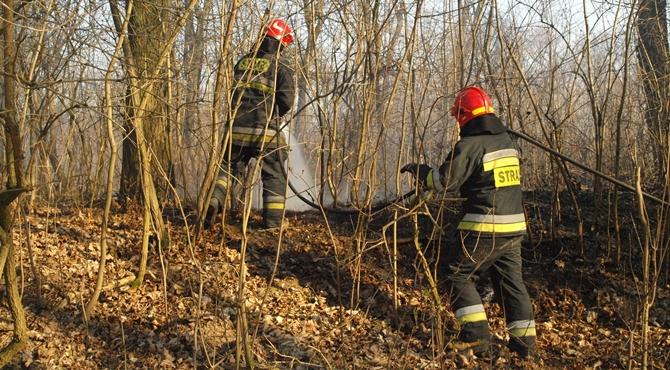Nowodworski: Groźne pożary traw i nieużytków