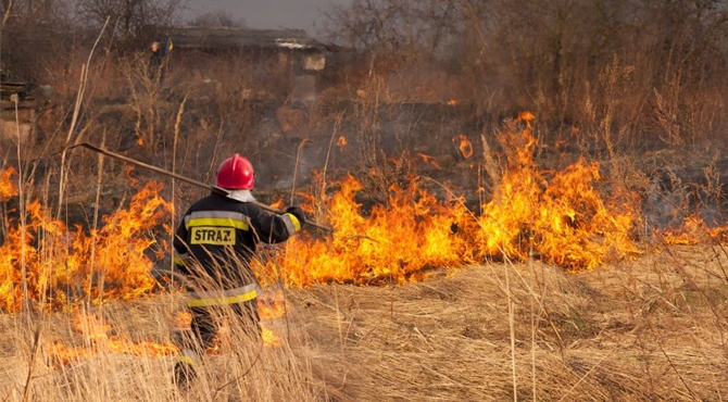 Śniadówko: Mandat za wypalanie pozostałości roślinnych